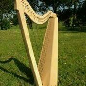Harp Picture 2