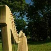 Harp Picture 1