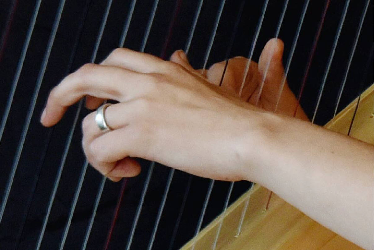 Beginners' Harp Workshops