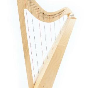 Morwenna Rose Harp Hire & Online Course Subscription